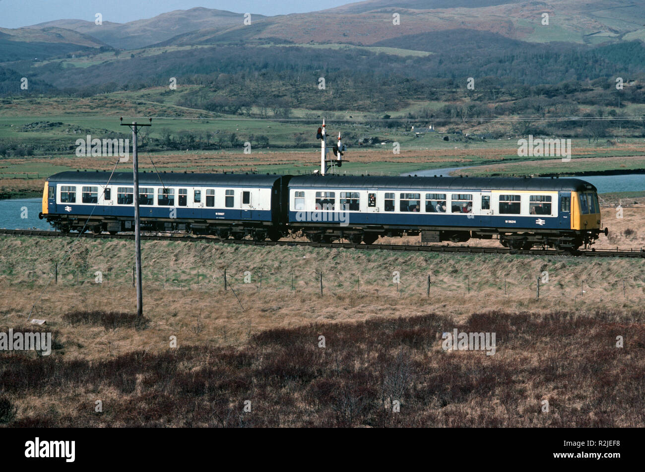 British Rail Diesel Multiple Unit, DMU, train on River Dovey marshlands, on the Dovey Junction to Pwllheli Cambrian Coast railway line, Merionethshire County, Wales, Great Britain - Stock Image