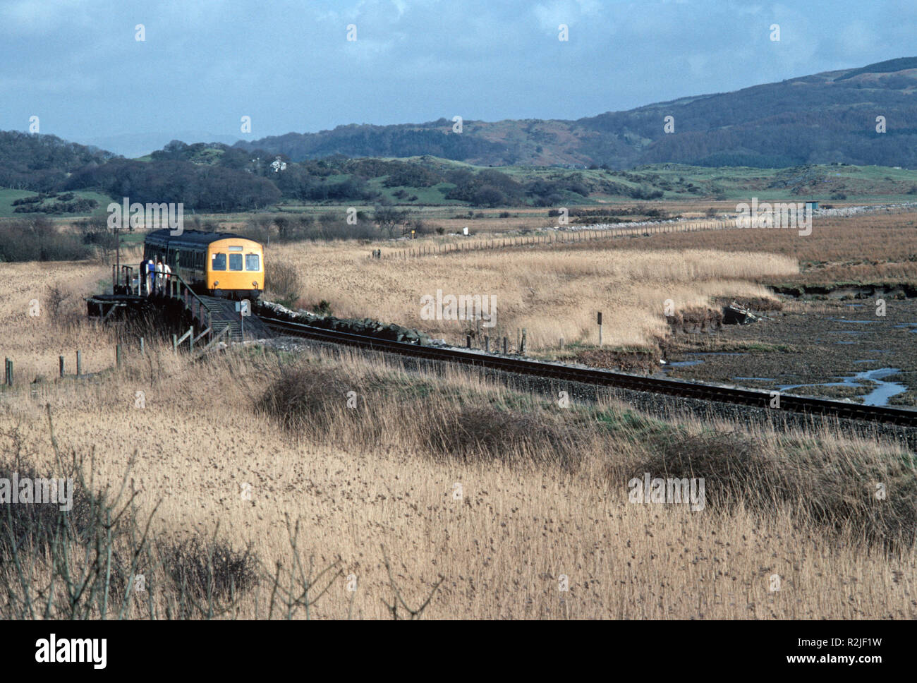 British Rail Diesel Multiple Unit, DMU, train on the River Dovey estuary marshlands, on the Dovey junction to Pwllheli Cambrian Coast railway line, Merionethshire County, Wales, Great Britain - Stock Image