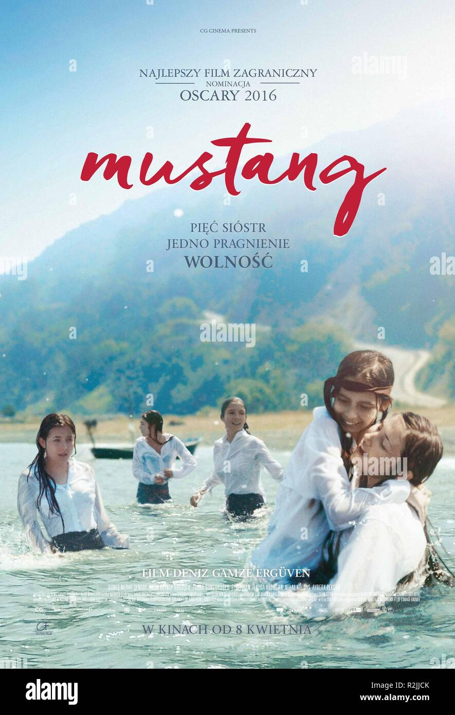 mustang-year-2015-turkey-france-director