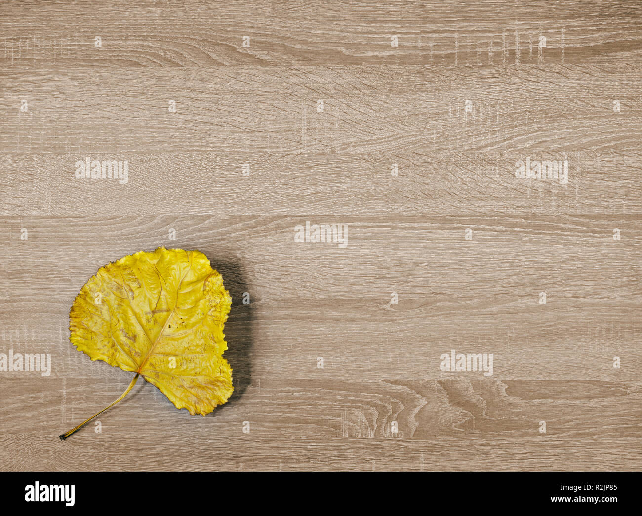 Yellow dry leaf on brown wooden texture background Stock Photo