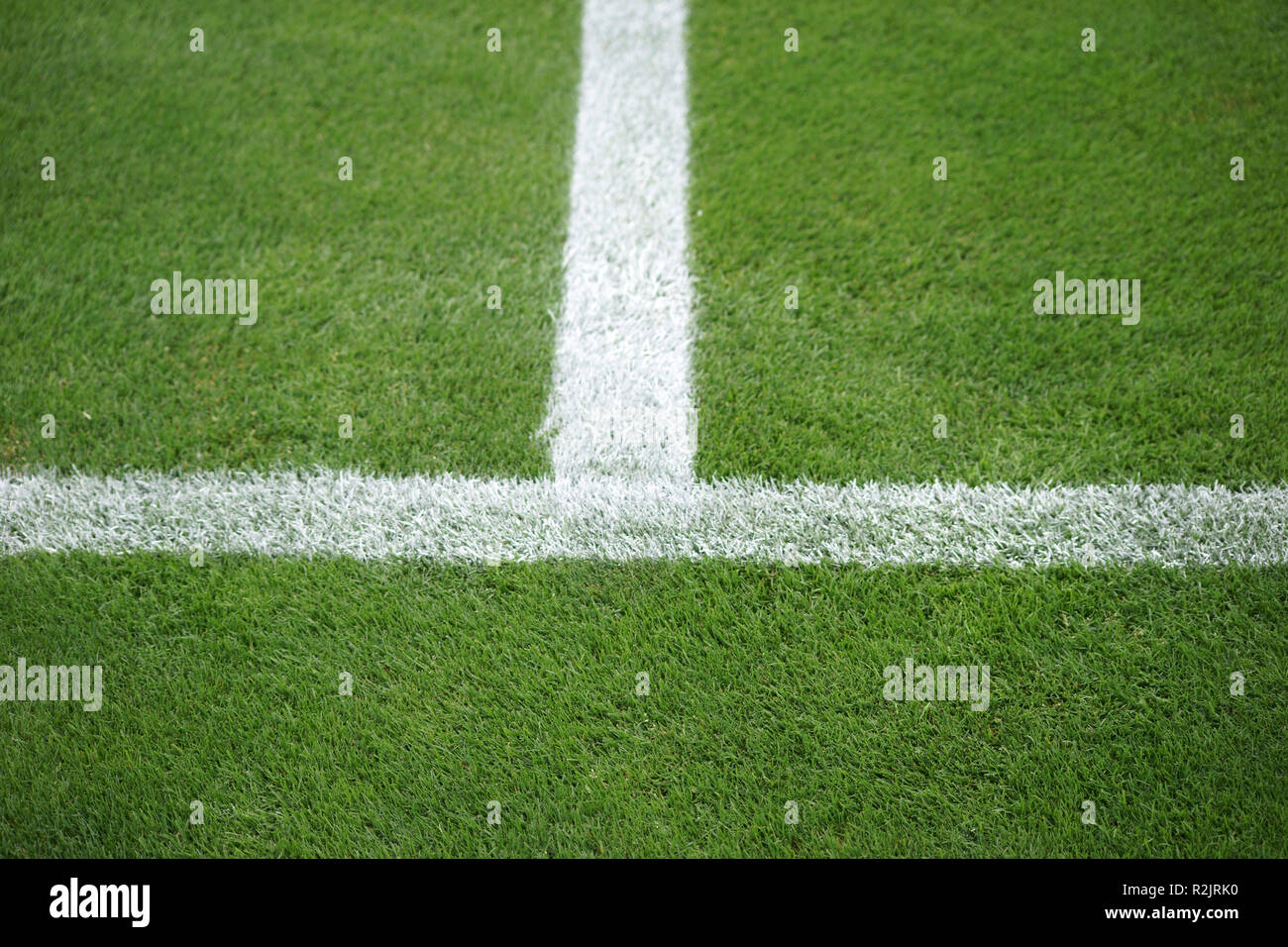 Green grass field of a soccer field with the sideline and the halfway line, - Stock Image