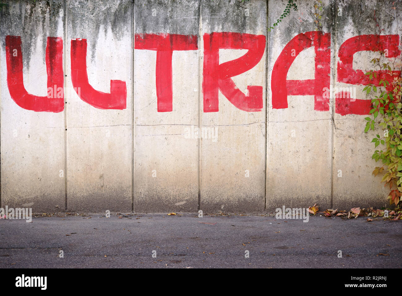 Word / Graffiti 'Ultras' for football fan on a concrete wall, - Stock Image