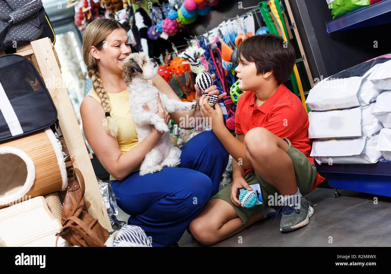 Preteen boy with mother selecting accessories for their havanese puppy in pet shop - Stock Image