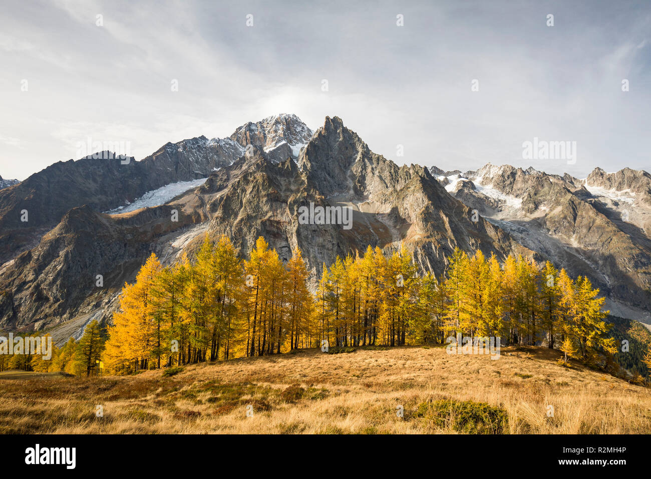 View over the Val Veny to Mont Blanc (4810m), Courmayeur, Aosta province, Aosta Valley, Italy - Stock Image