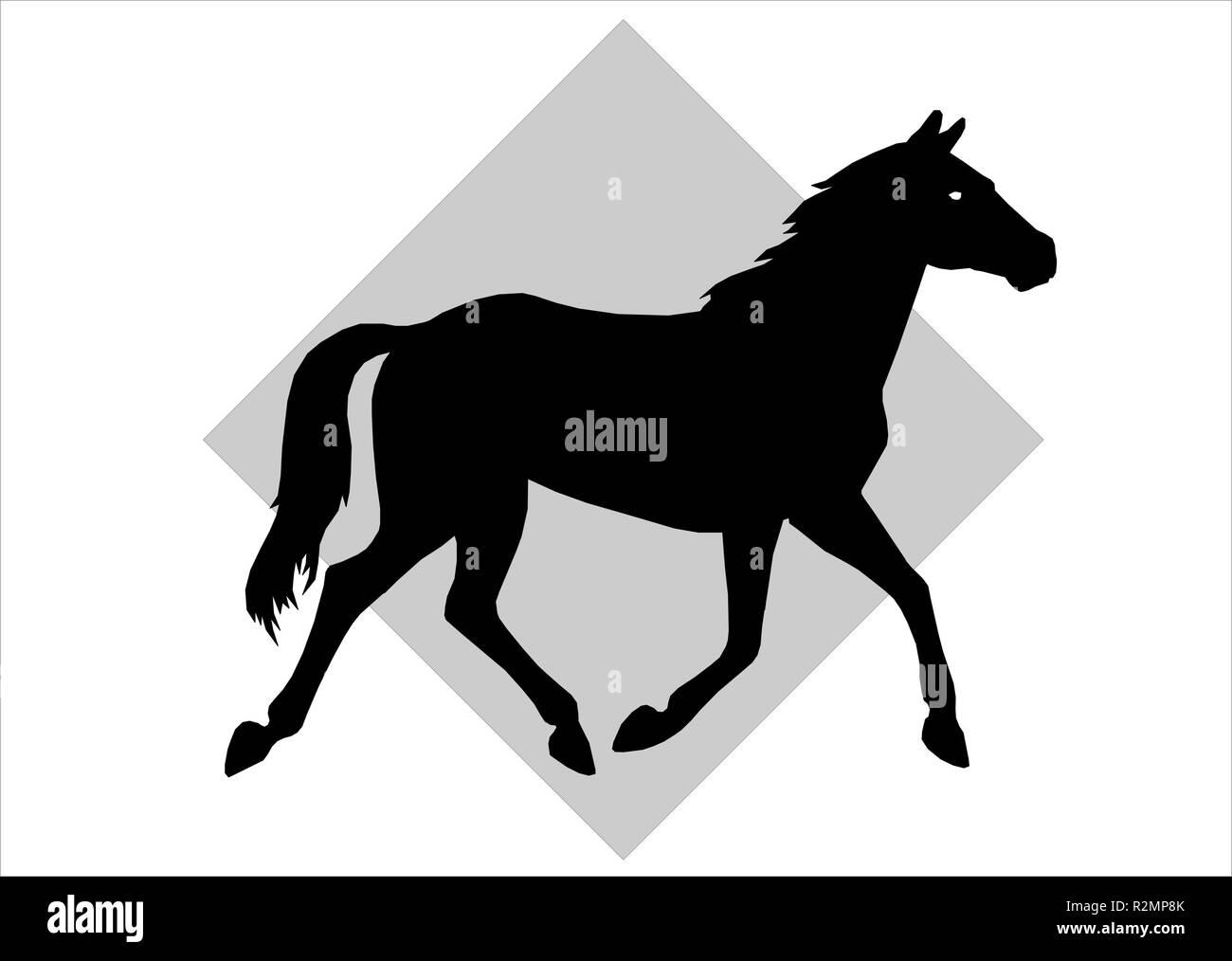 horse 05 Stock Photo