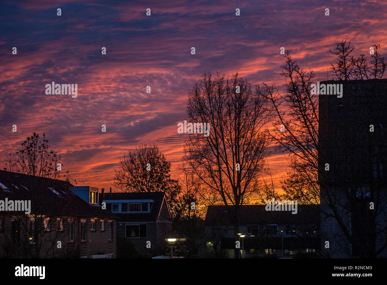 Colorful sunset in a dutch town. Trees are silhouetted against the evening sky. - Stock Image