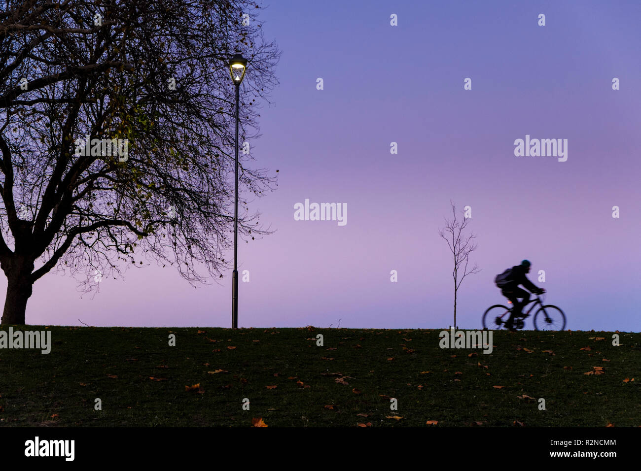 Cyclist riding past trees and a streetlamp at the edge of a park at night, Nottingham, England, UK - Stock Image