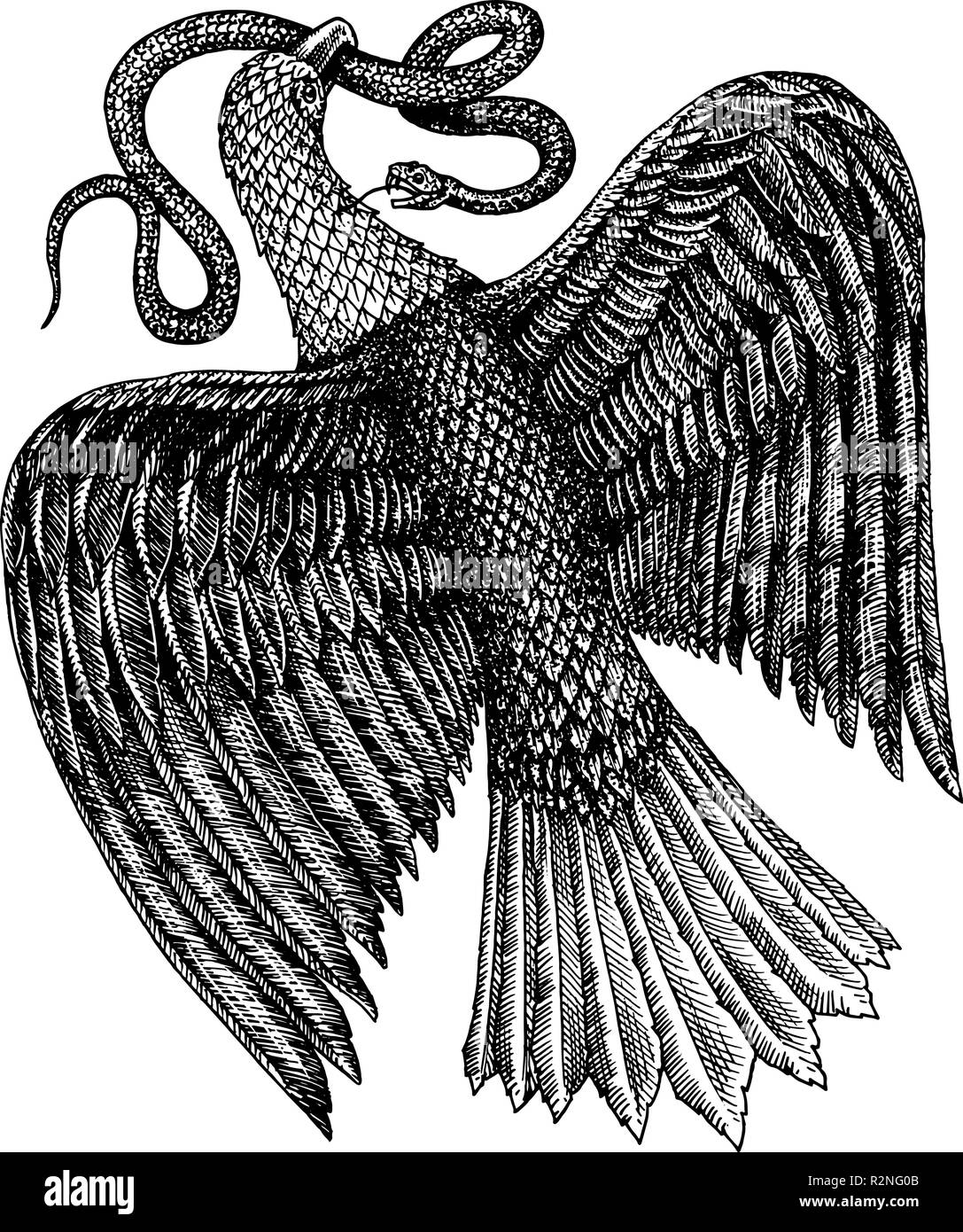 aquila symbol of freedom an eagle eating a snake wild predatory