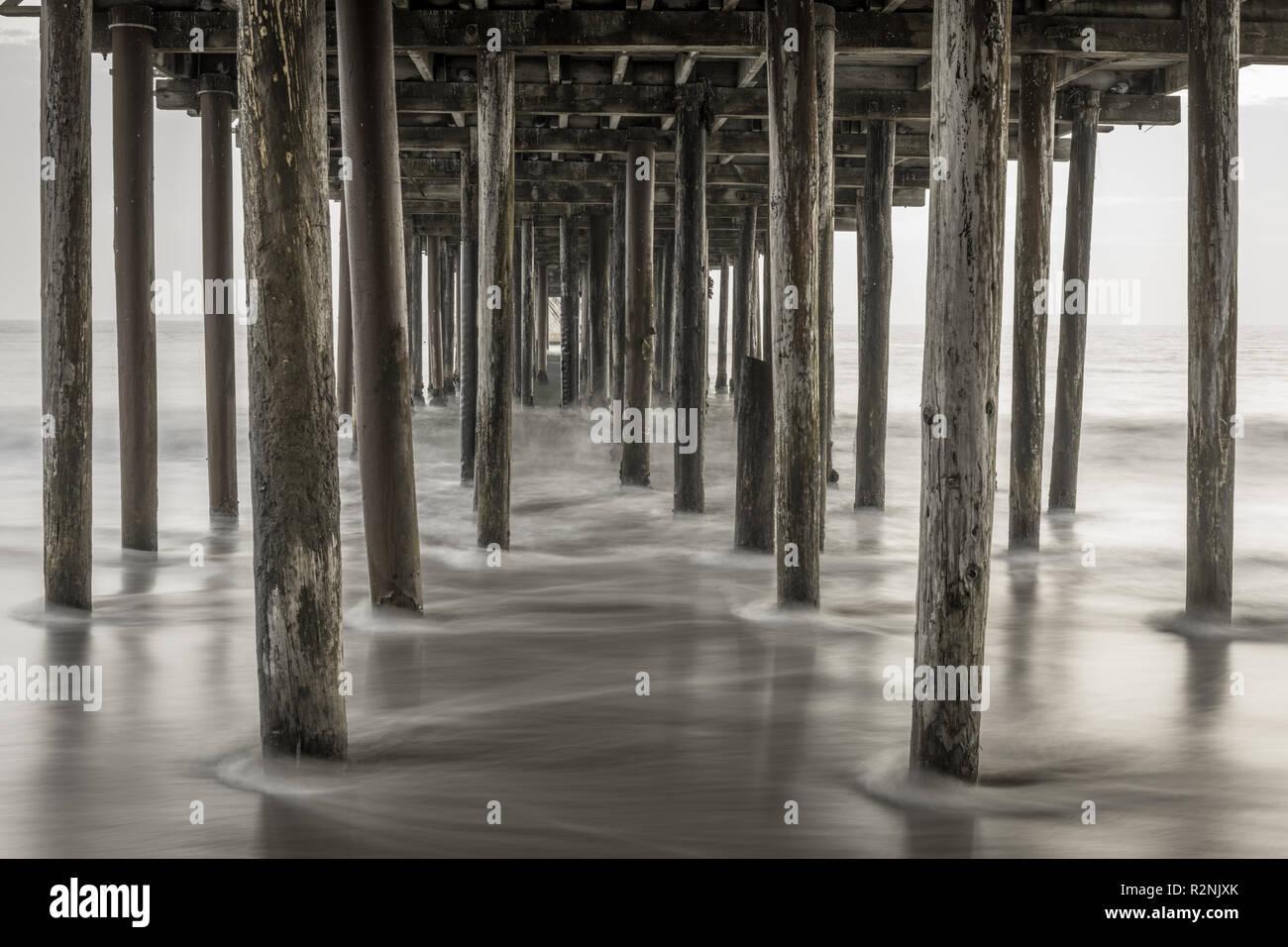 Pigeons under Seacliff fishing pier. - Stock Image