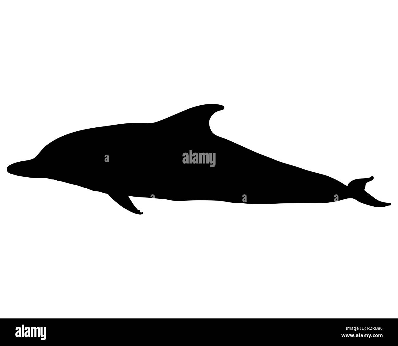 Dolphin Silhouette Stock Photo Alamy Find high quality dolphin silhouette, all silhouette images can be downloaded for free for personal use only. https www alamy com dolphin silhouette image225477846 html