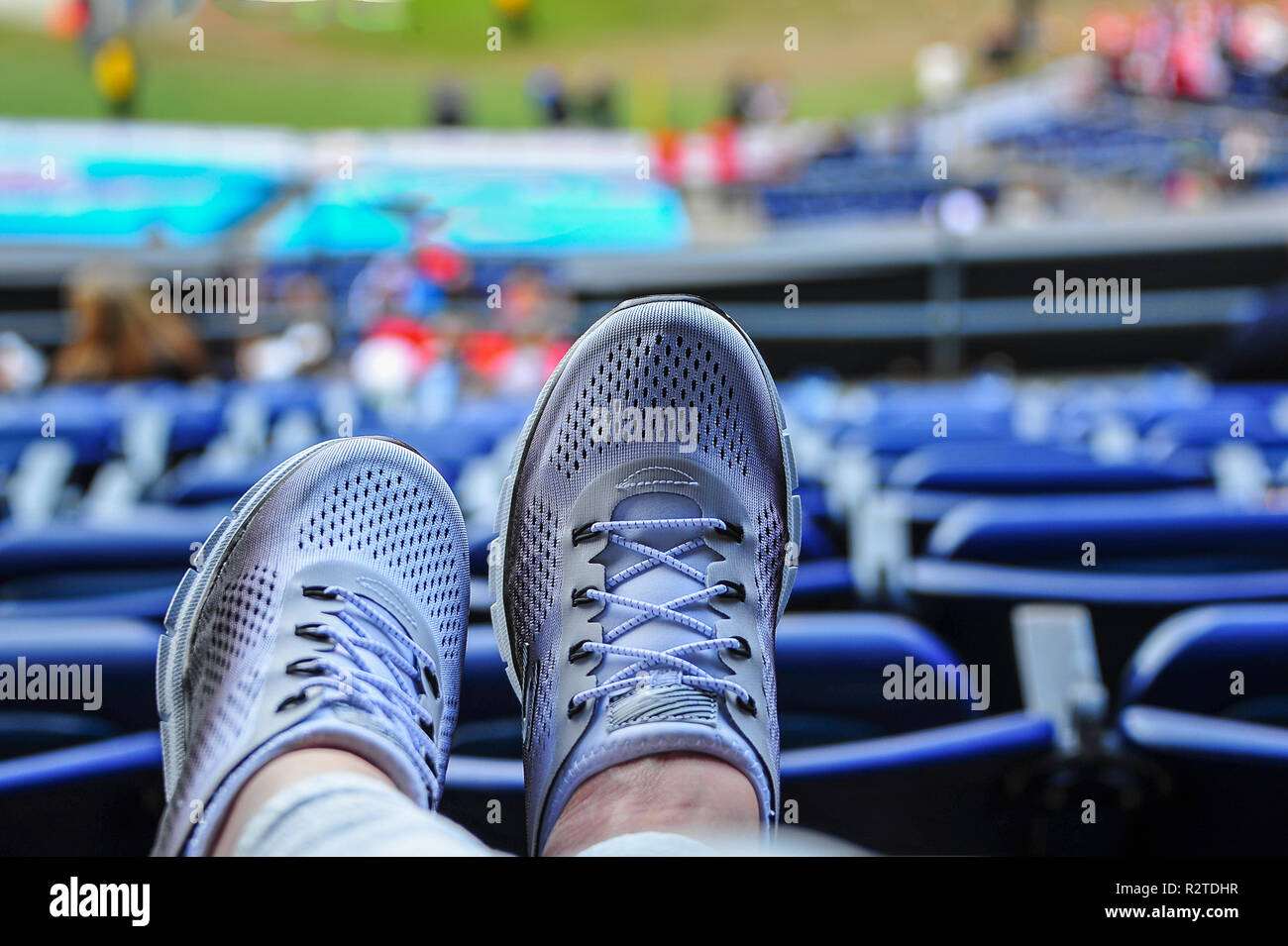Close up top view of pair of ladies classic white sneakers with grey trim. Modern lifestyle footwear for men and women, with sporting venue background - Stock Image