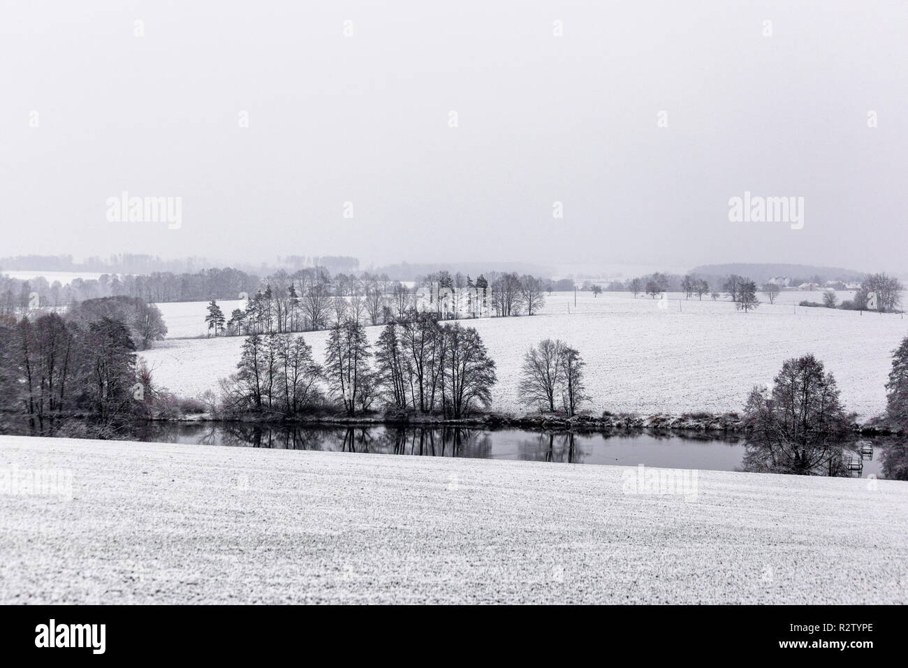 Winter landscape with white snow covered fields, trees and hedges - Stock Image