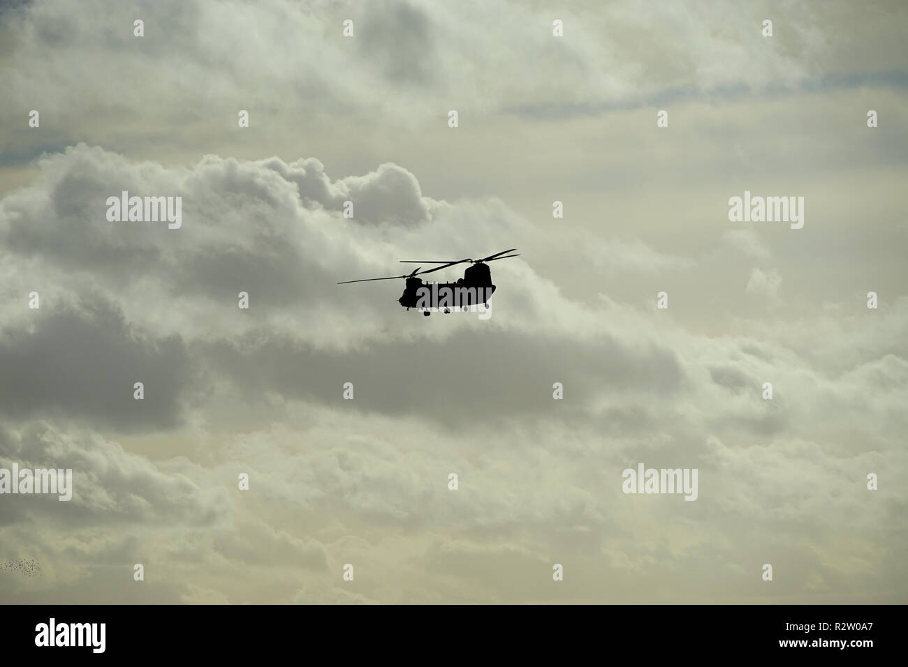 An RAF Chinook passes over Barton Hills Nature Reserve in Bedfordshire - Stock Image