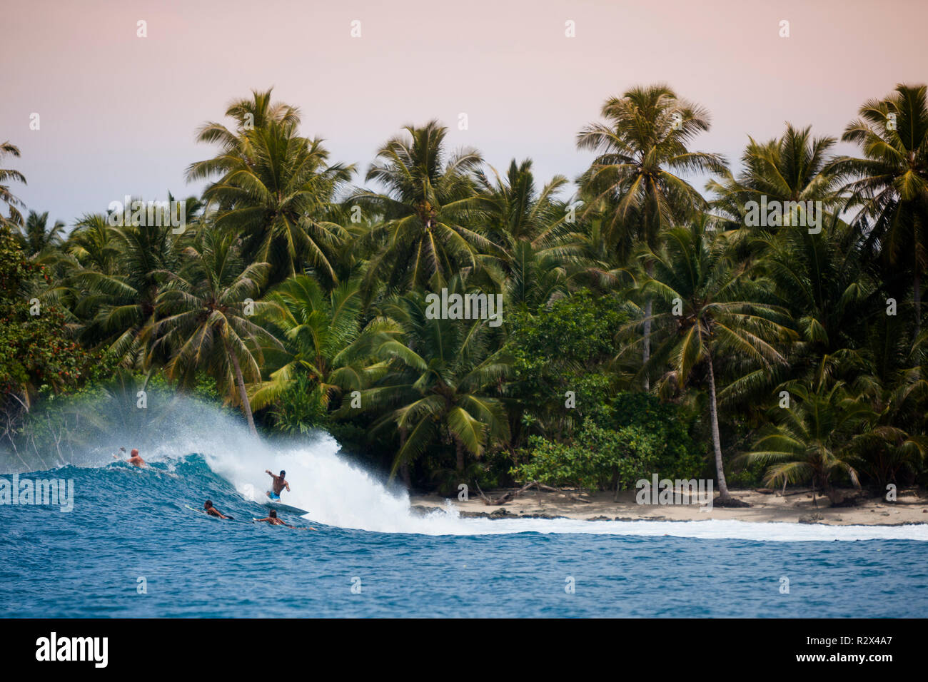 Surfer on a wave in the Mentawi Islands (South Siberut). - Stock Image