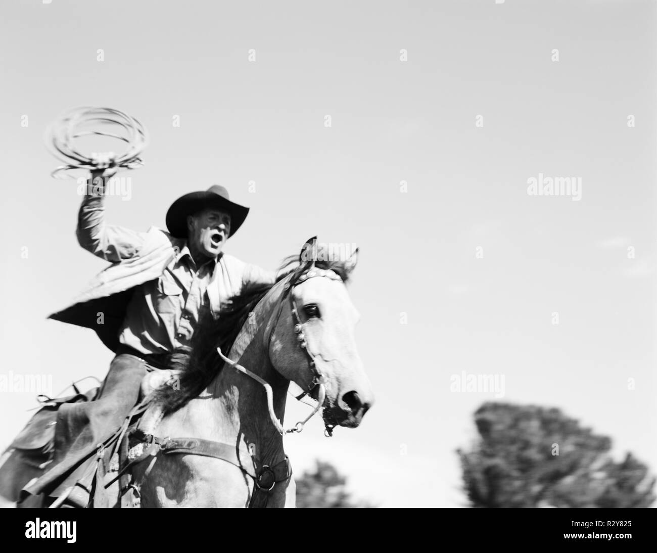Mature cowboy riding a horse and swinging a lasso outdoors. - Stock Image