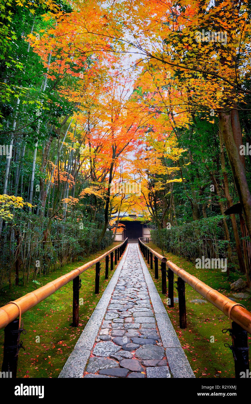 Entrance of Daitoku-ji temple in autumn in Kyoto Japan - Stock Image