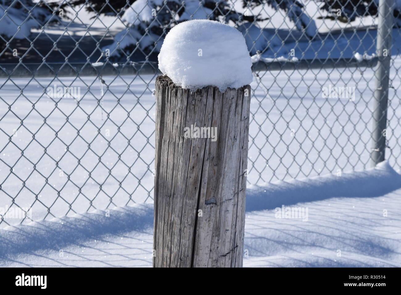 fresh winter Snowfall - Stock Image