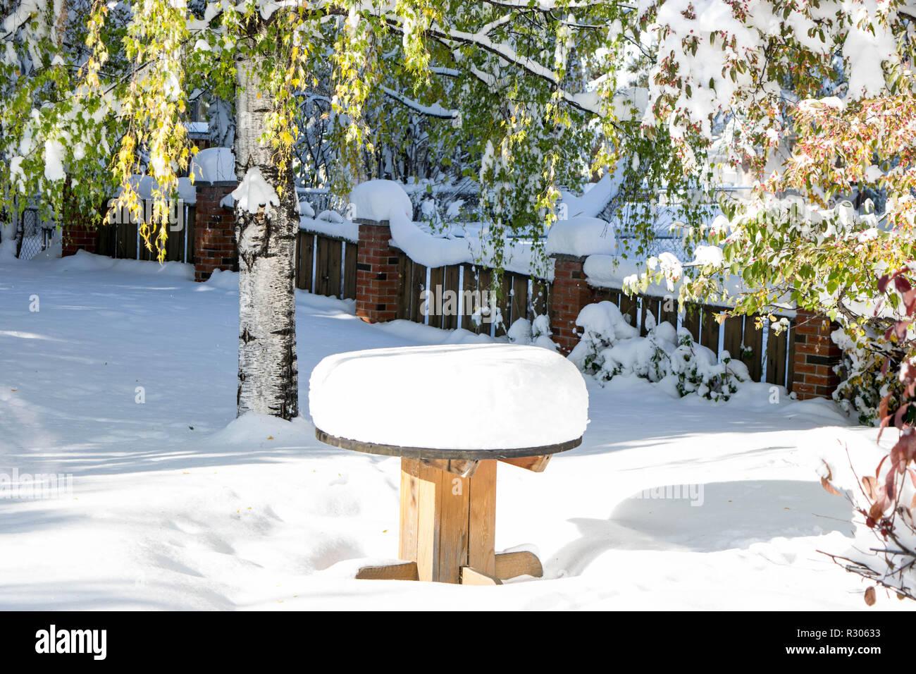 Snowfall fresh on the ground in Calgary - Stock Image