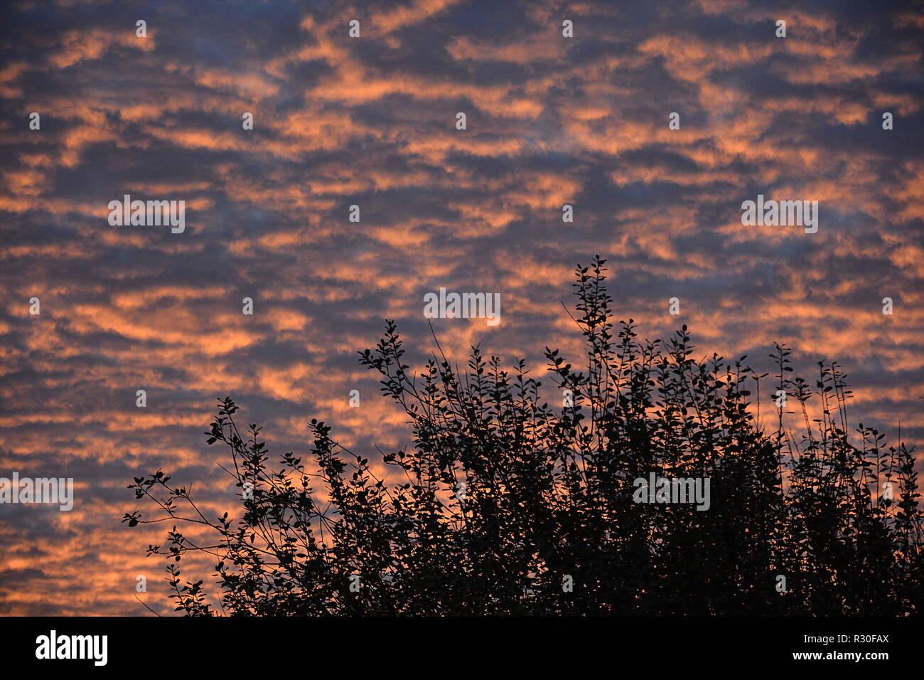 Sonnenaufgang Hintergrund Abendrot - Stock Image