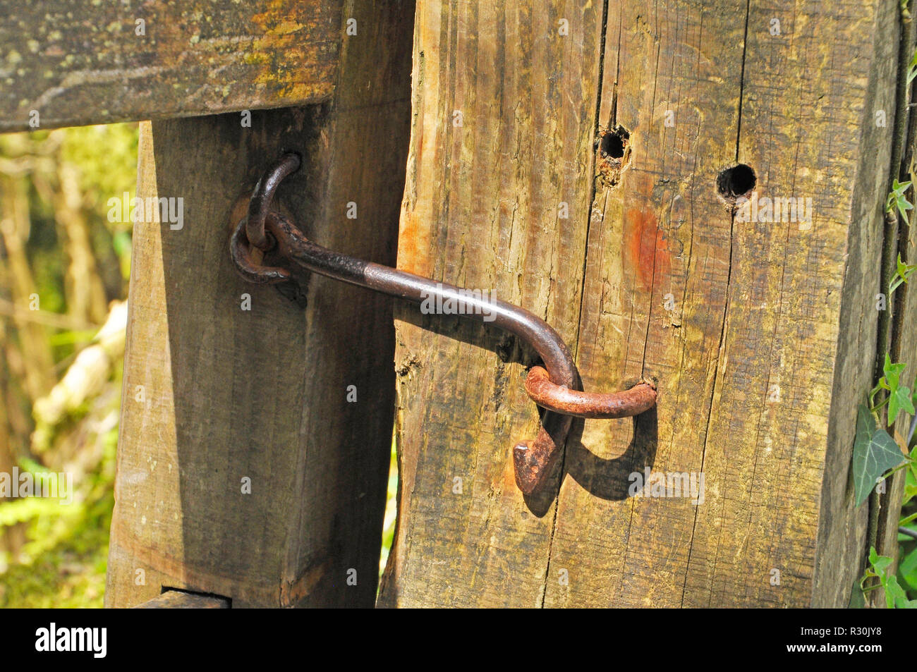 Iron gate latch,made by local blacksmith, Exmoor N P, Somerset, UK - Stock Image