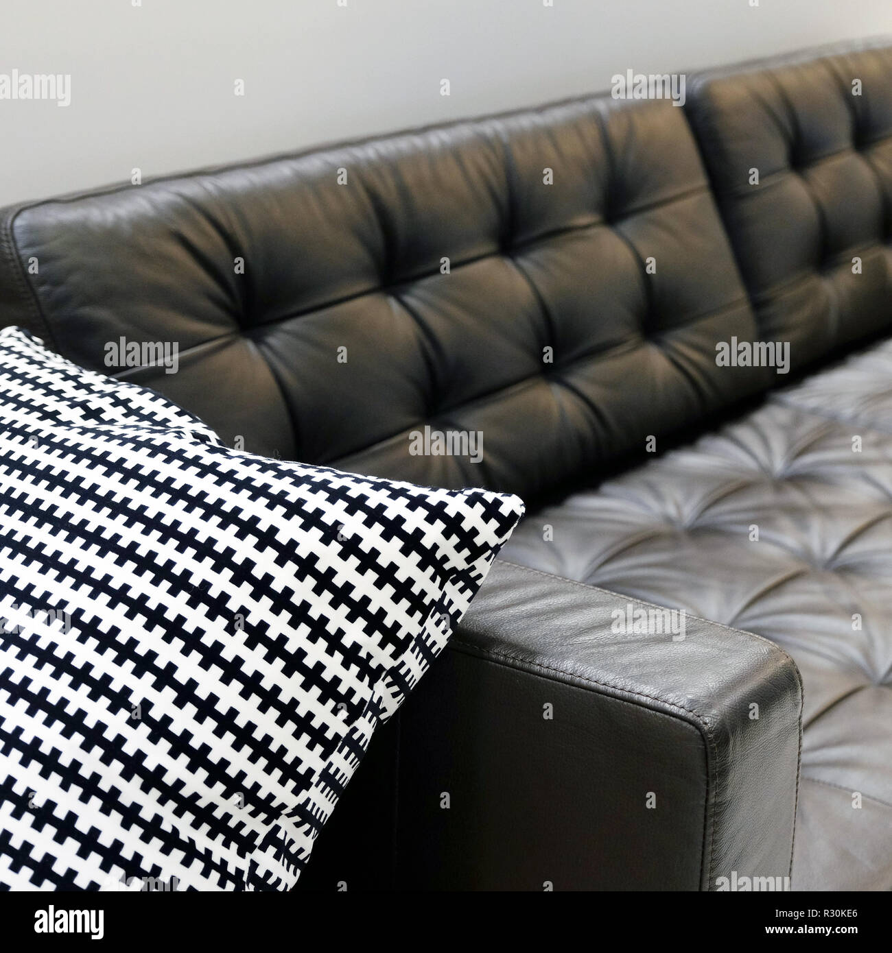 Magnificent Living Room Interior Leather Sofa With Cushions And Fur Caraccident5 Cool Chair Designs And Ideas Caraccident5Info