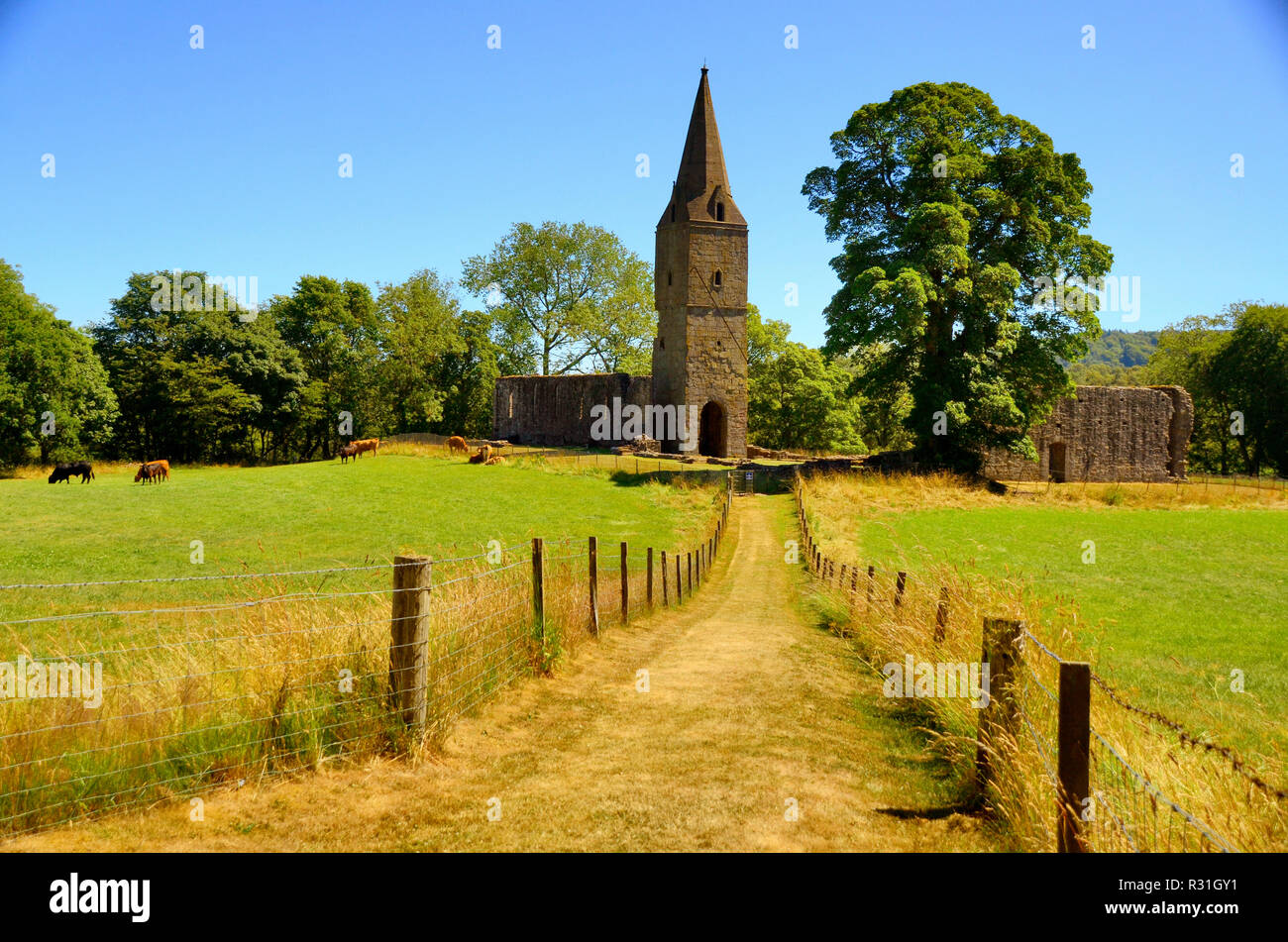 The ancient priory church at Restenneth. It is believed to have been founded by Nechtan, king of the Picts about 715 - Stock Image