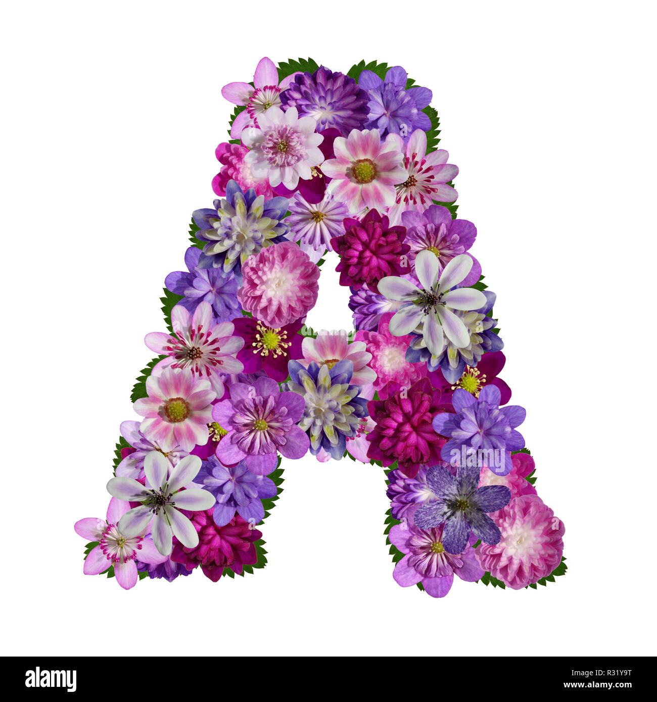 Flowers Alphabet Letter A Stock Photo  225622148