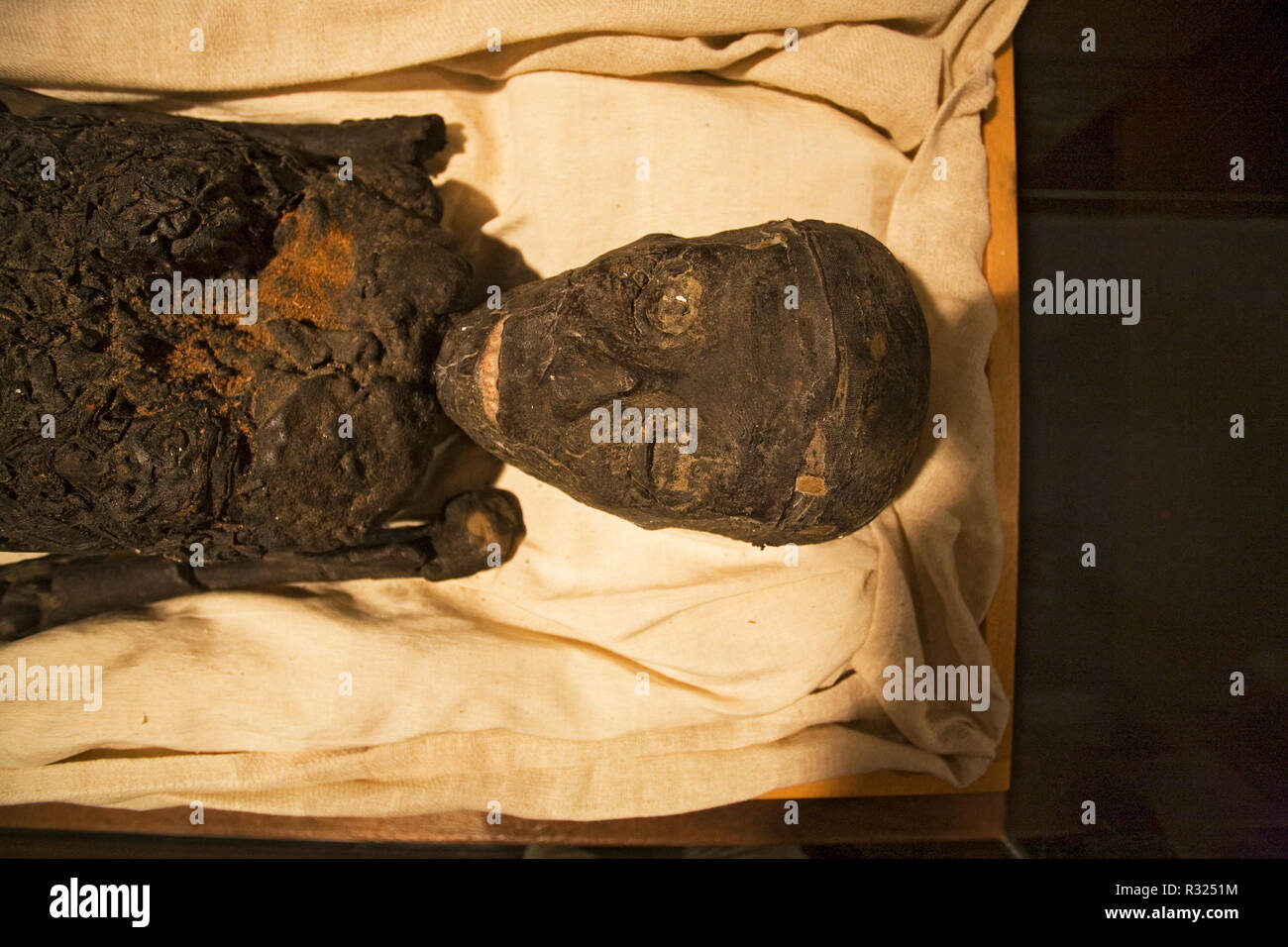 King Tut's mummy, or King tutankhamun's mummy, found in his tomb in the Valley of the Kings, Egypt. - Stock Image