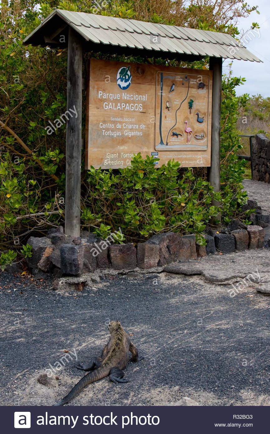 Sign at Galapagos - Stock Image