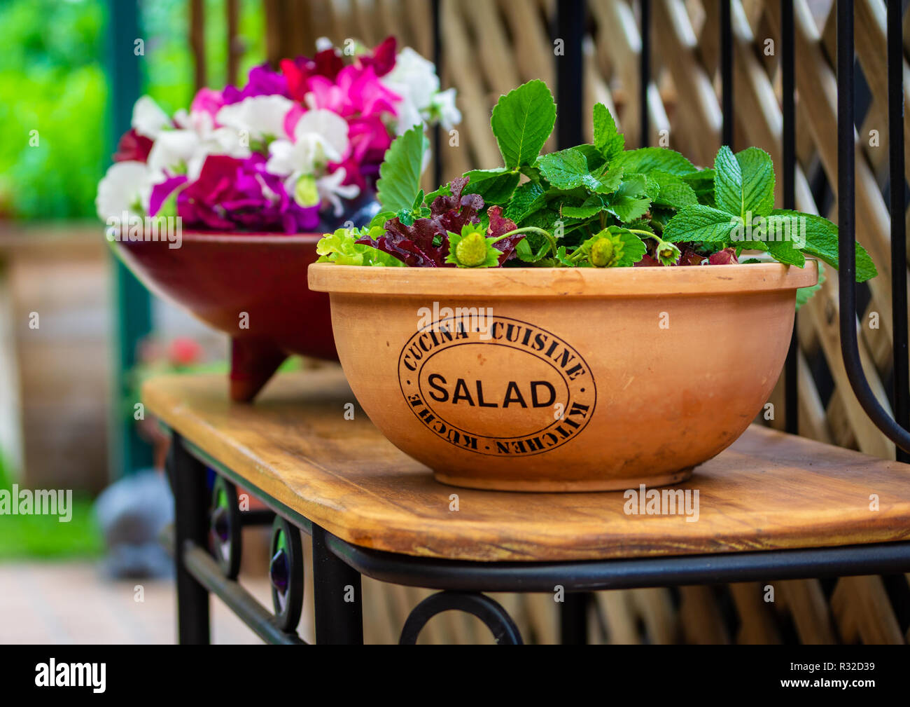 Recycled Plant Pots Plastic Free Gardening Salad Plants Growing In Upcycled Recycled Salad Bowl Outside In Garden On Repurposed Book Shelf Stock Photo Alamy