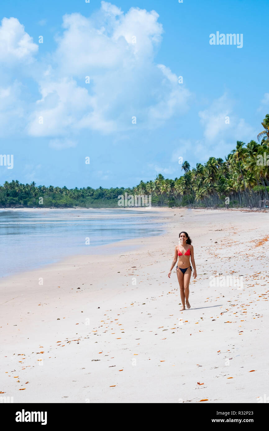 A beautiful young woman on a white sand palm tree beach in the tropics - Stock Image
