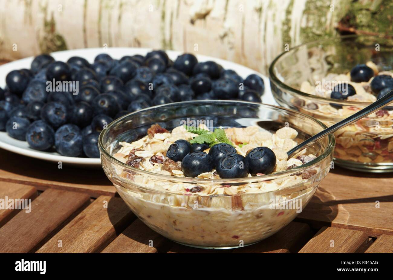 muesli with blueberries Stock Photo
