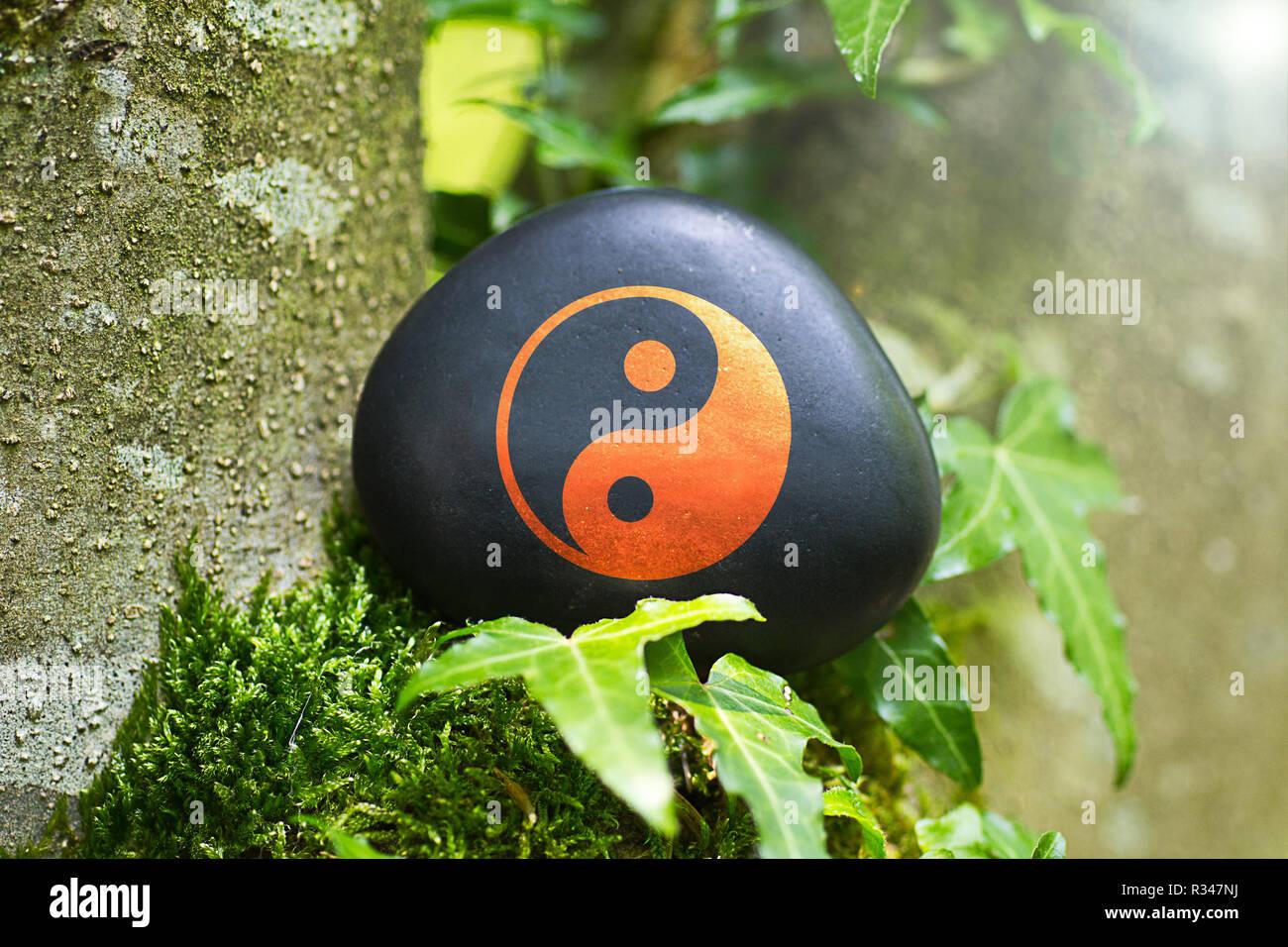 yin & yang - Stock Image