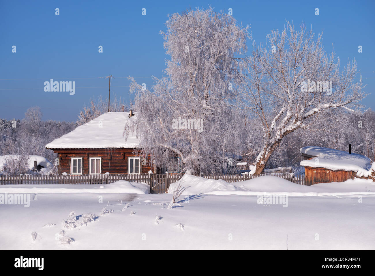 Traditional russian country house izba in village Talitsa under winter snow. Altai, Siberia, Russia - Stock Image