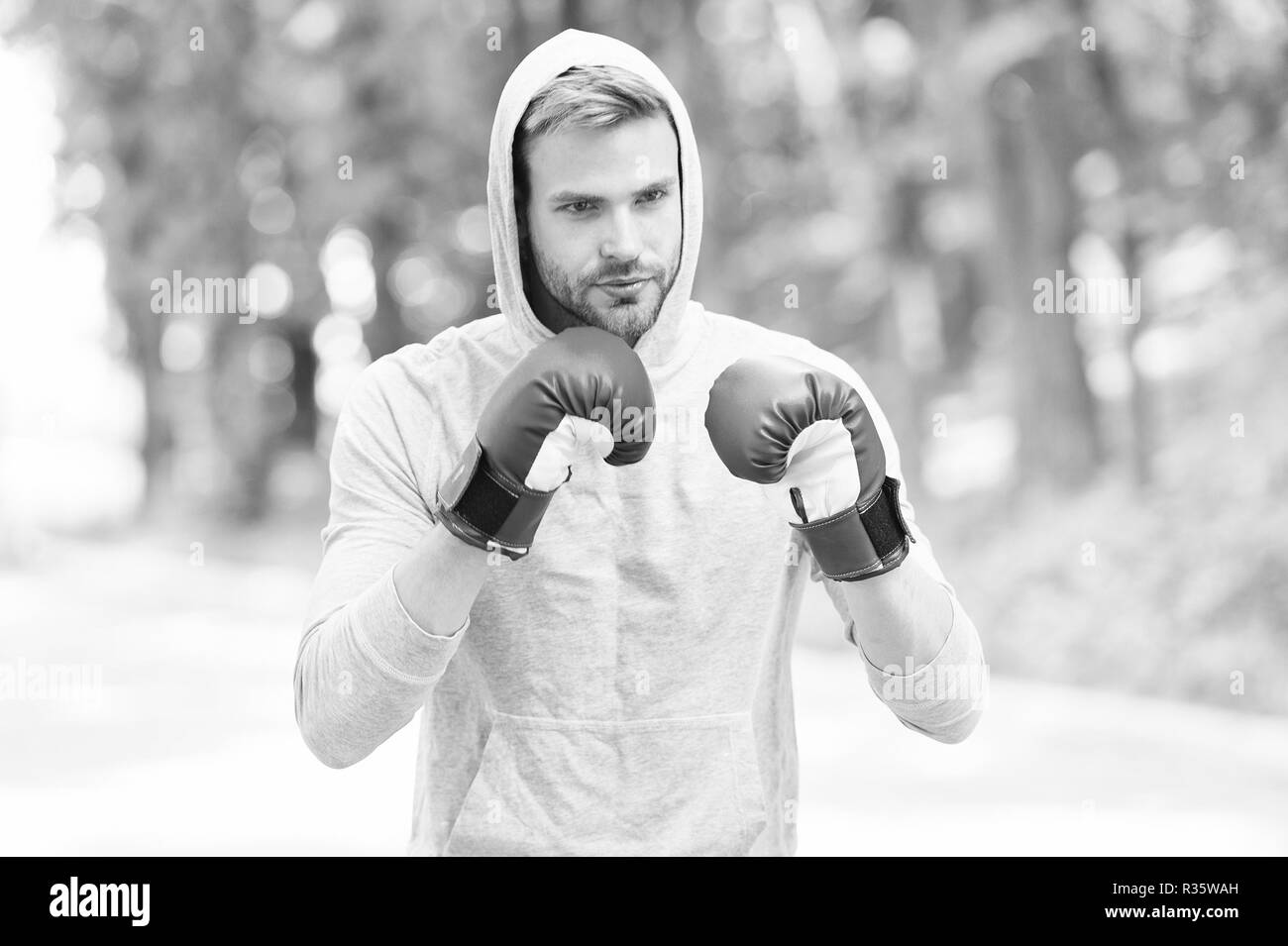 Training for big day. Man athlete on concentrated face with sport gloves practicing boxing punch, nature background. Boxer hood head practices jab punch. Sportsman boxer training with boxing gloves. - Stock Image