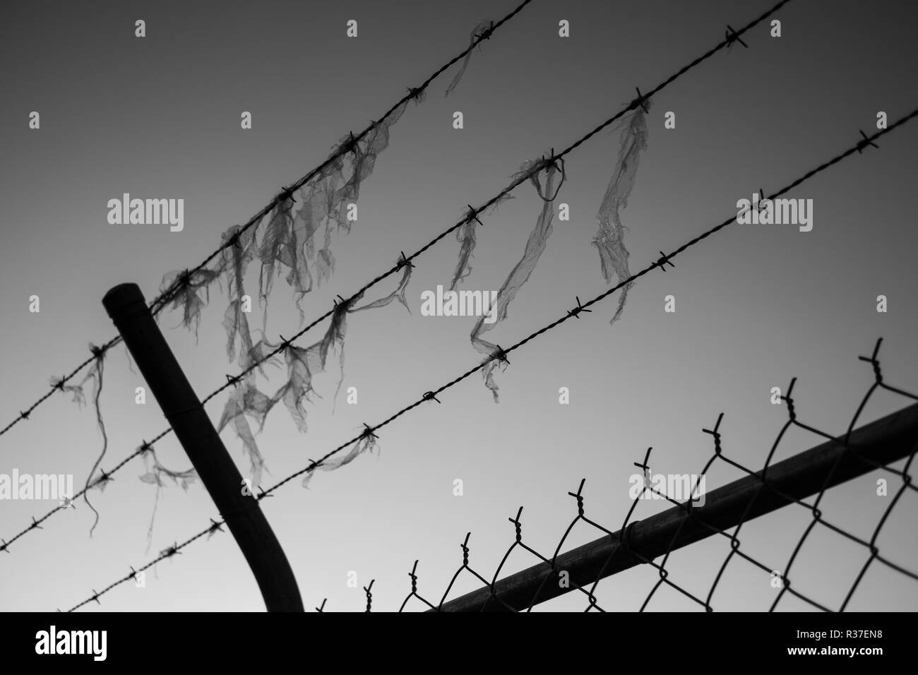 Barbed wire and fence - Stock Image