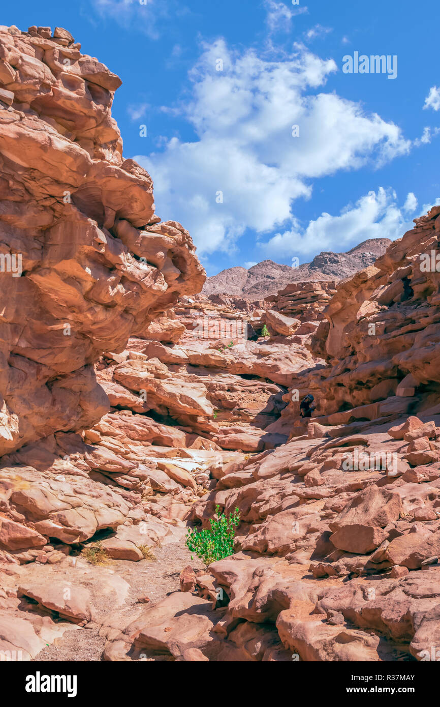 Colored canyon in Nuweiba Dahab - Stock Image