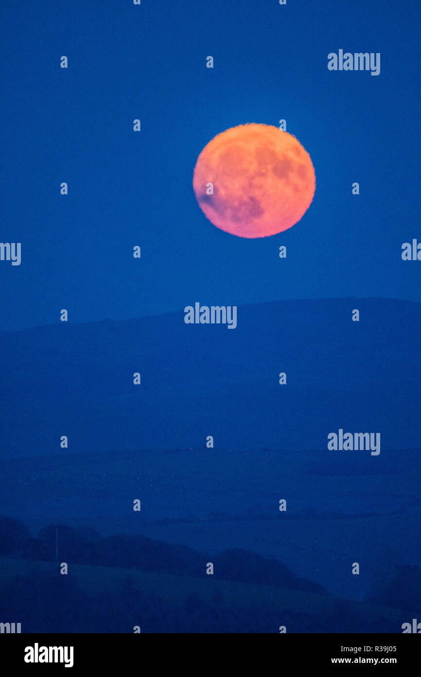 Aberystwyth, Wales, UK. November 22 2018. The full moon, known this month as the Beaver Moon, rises over the hills outside Aberystwyth , mid Wales, on a freezing cold November night  photo credit: Keith Morris / Alamy Live News - Stock Image