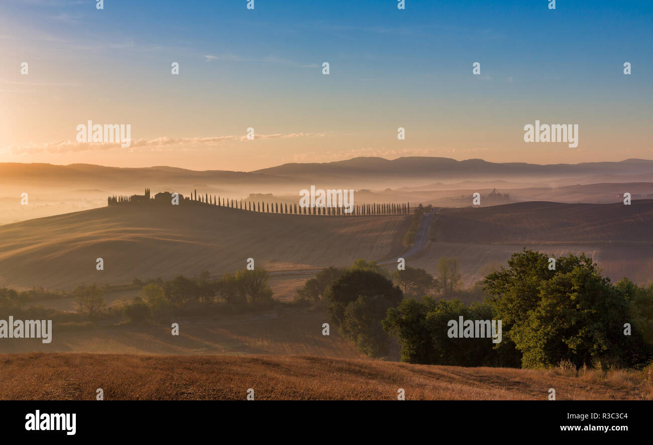 Tuscan landscape with cypress trees and farmstead at sunrise, dawn, San Quirico d'Orcia, Val d'Orcia, Tuscany, Italy - Stock Image