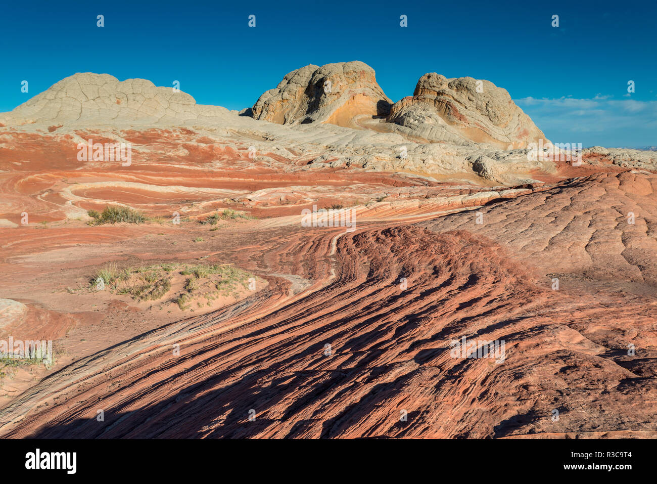 Sandstone Landscape, Vermillion Cliffs, White Pockets Wilderness, Bureau of Land Management, Arizona - Stock Image