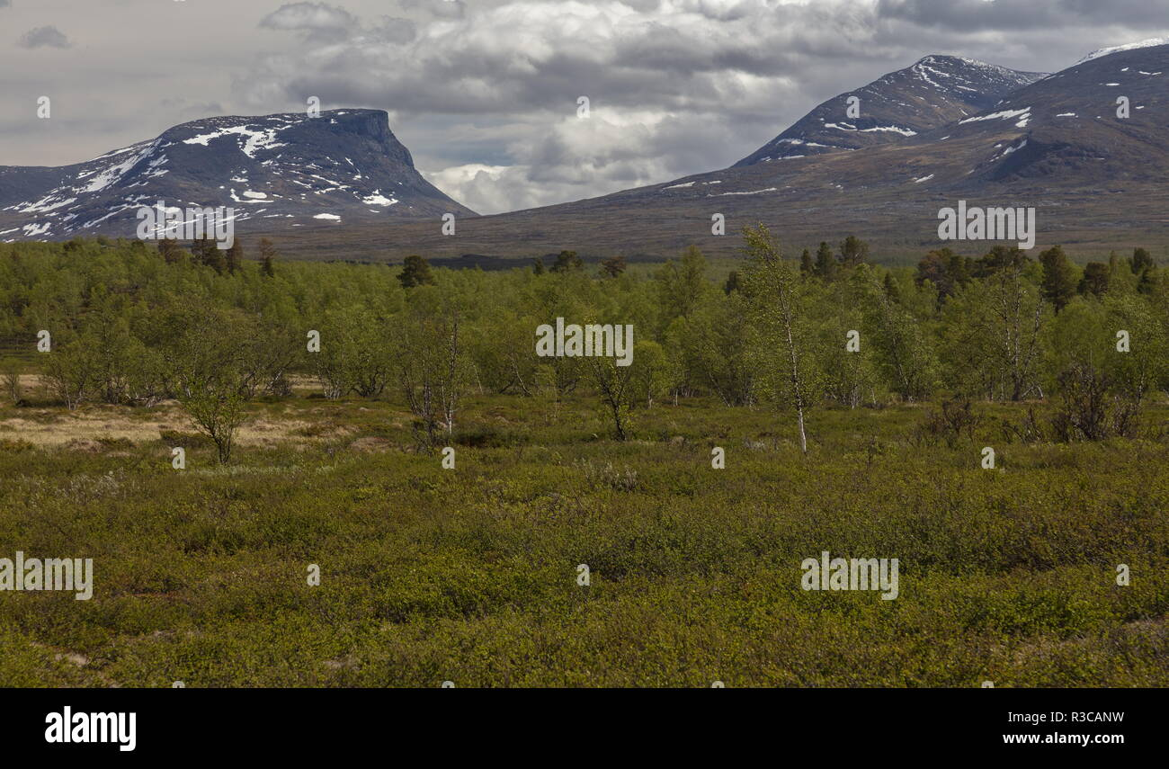 Lapporten, The Lapponian Gate, in Abisko National Park, northern Sweden. - Stock Image