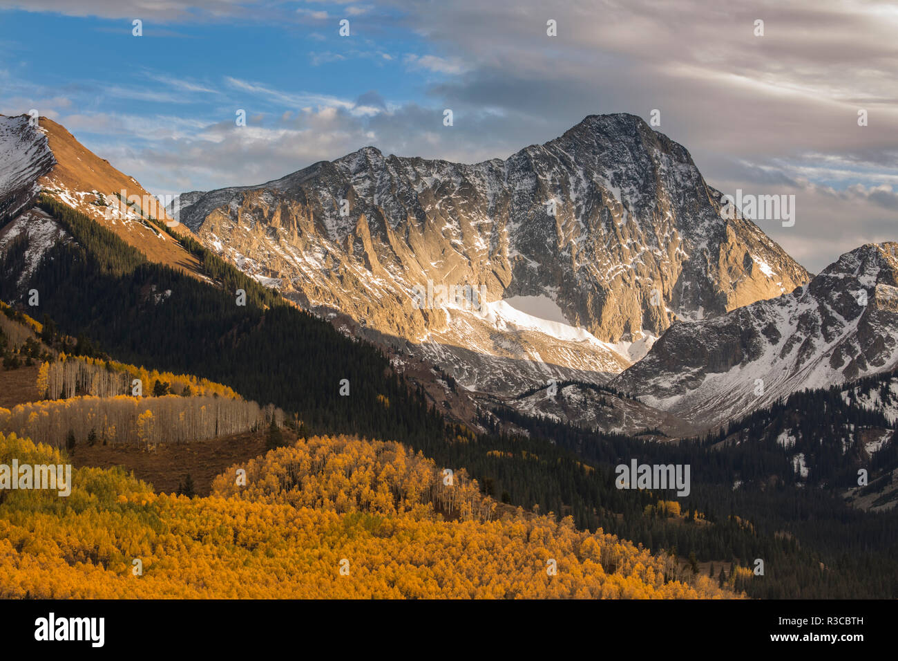 USA, Colorado, Maroon Bells-Snowmass Wilderness. Capitol Peak and aspen forest landscape. - Stock Image