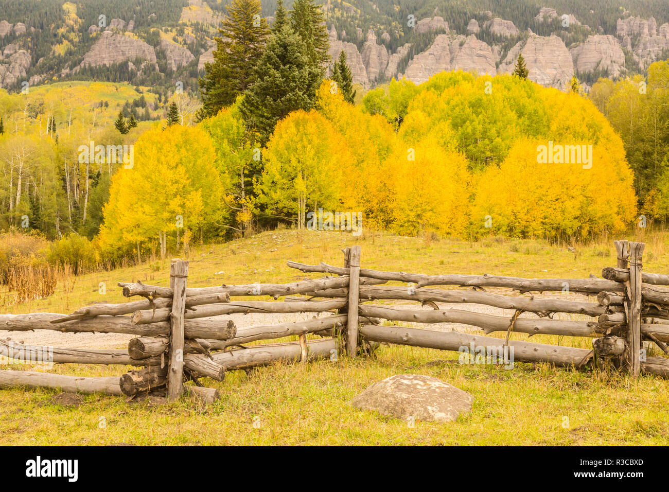 USA, Colorado, Gunnison National Forest. Split rail fence and trees in autumn color. - Stock Image