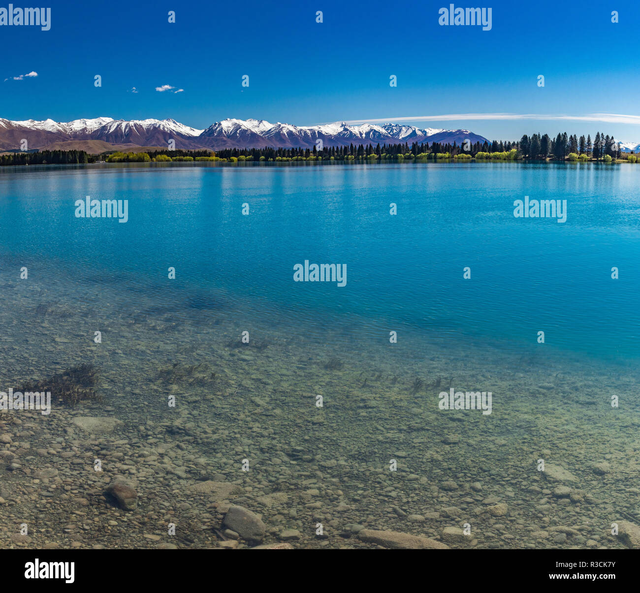 Lake Ruataniwha, New Zealand, South Island, trees and mountains, water reflections - Stock Image