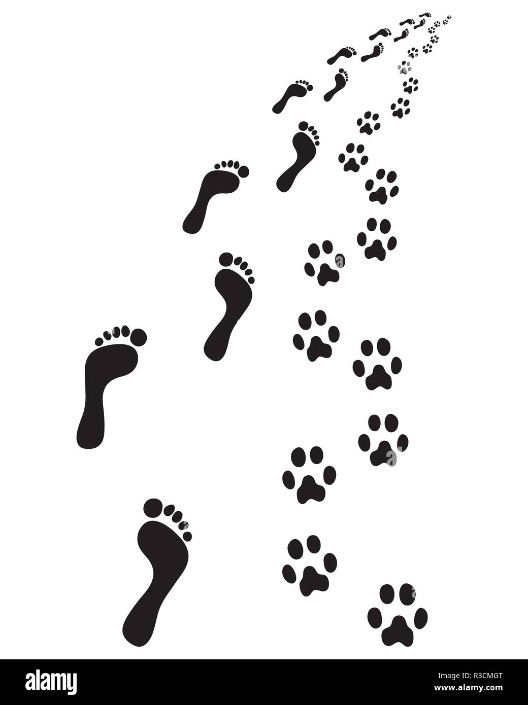 6bf3d49bad32 Prints of human feet and dog paws Stock Photo: 225858328 - Alamy
