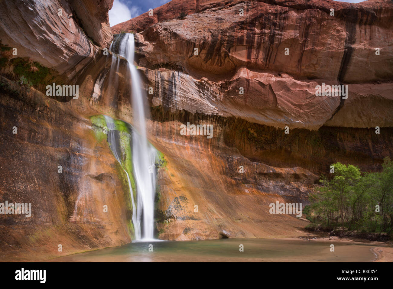 USA, Utah, Grand Staircase-Escalante National Monument. Lower Calf Creek Falls and sandstone cliff. - Stock Image