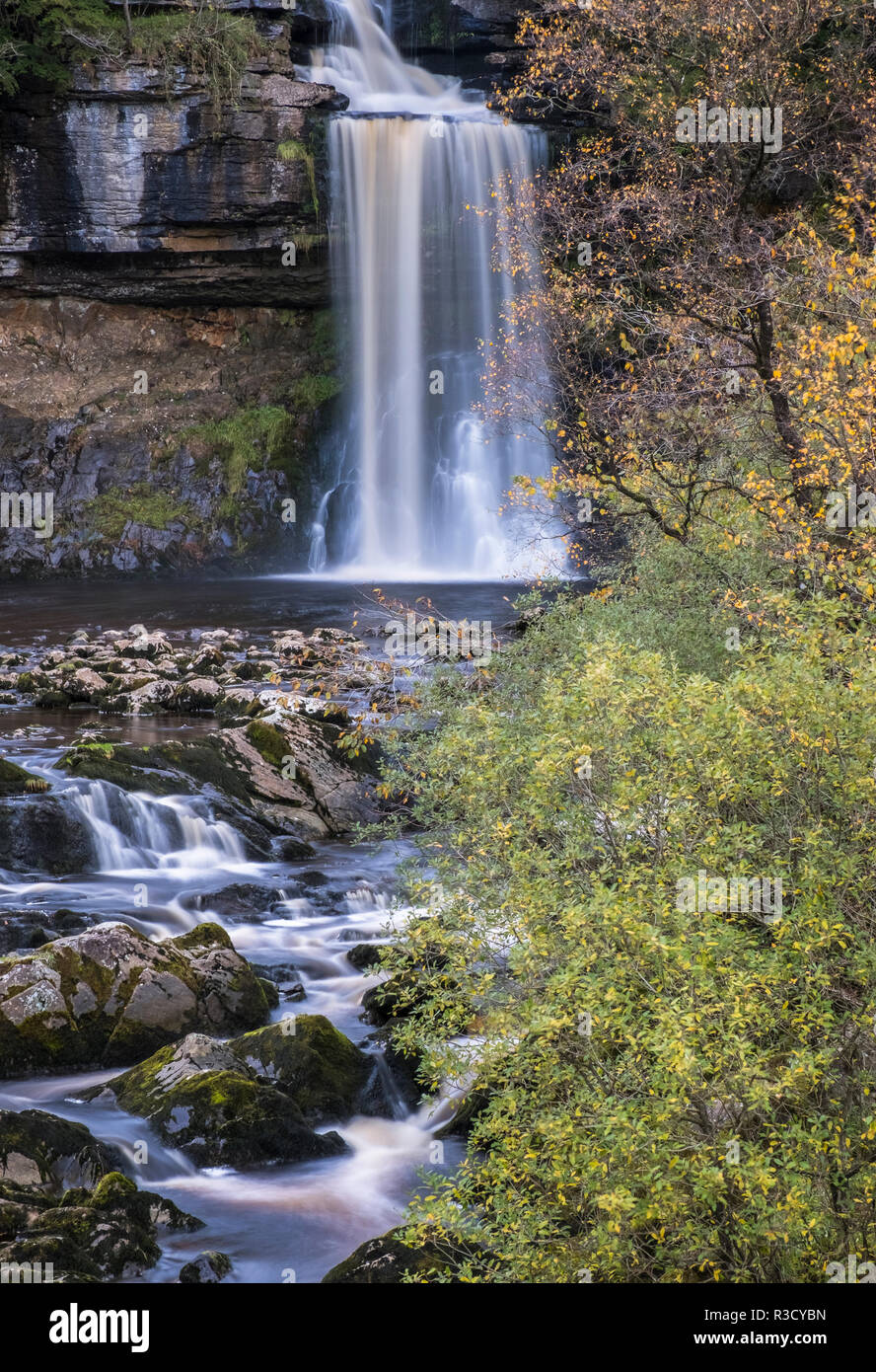 Thornton Force waterfall, part of the Ingleton Waterfall Trail, autumn, Yorkshire Dales National Park, North Yorkshire, England, UK - Stock Image