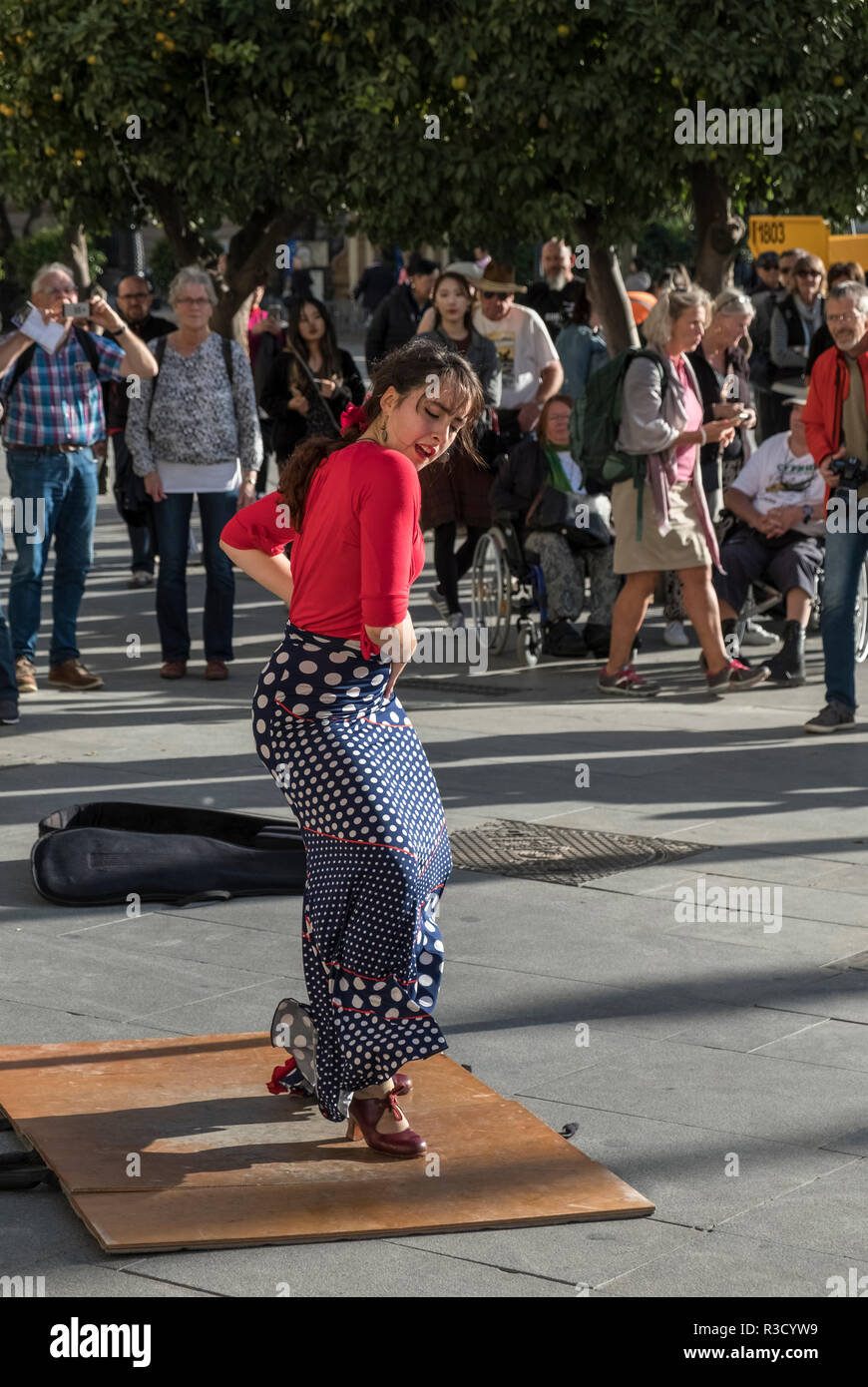 A young woman flamenco dancer performs for tourists on a street in Seville, Andalucia, Spain - Stock Image