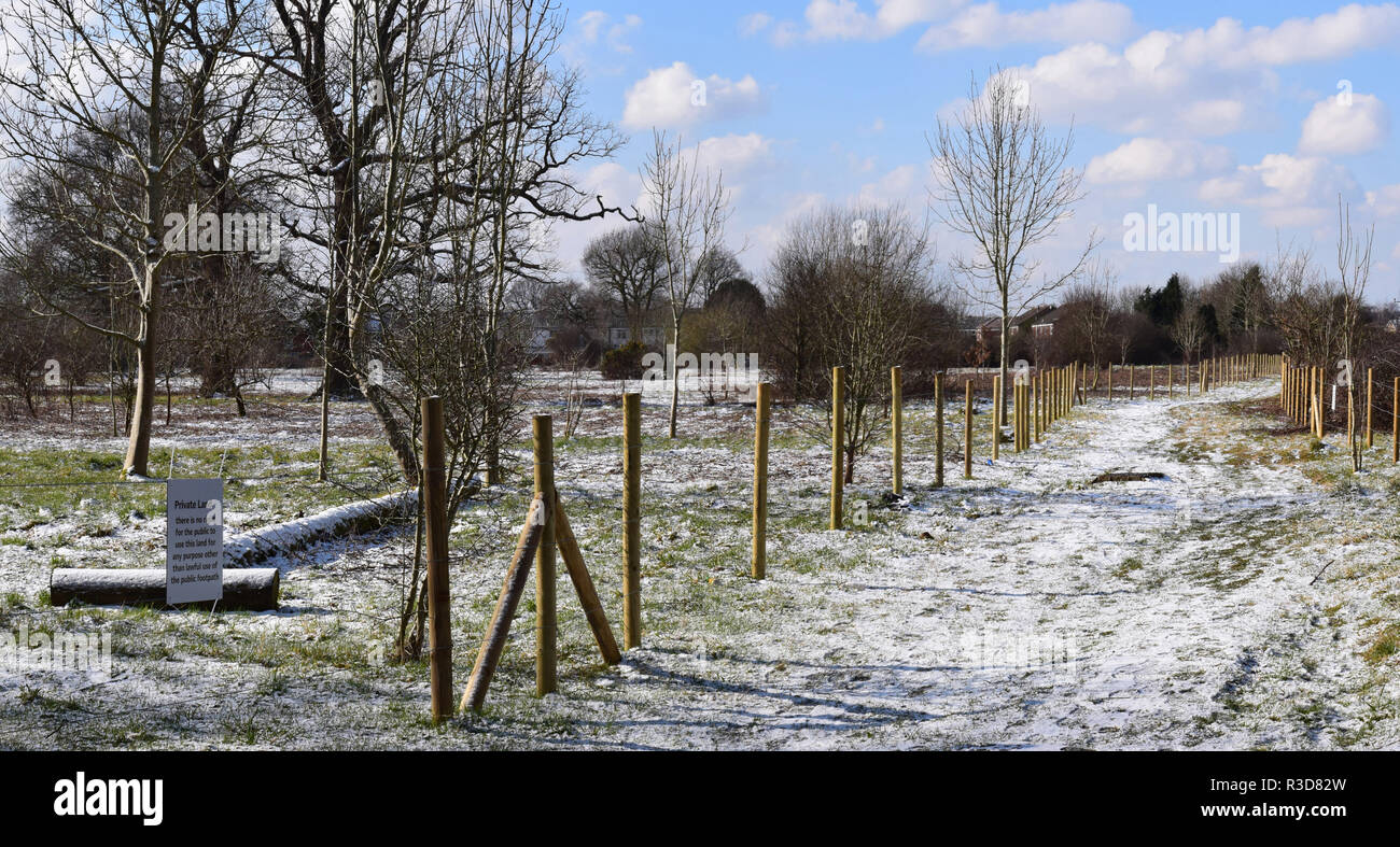 Four seasons in Horley No.2 Winter - Stock Image