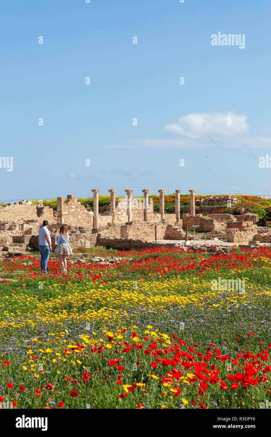 House of Theseus and spring flowers, Archaelogical site of Kato Pafos, Paphos (Pafos), Pafos District, Republic of Cyprus - Stock Image